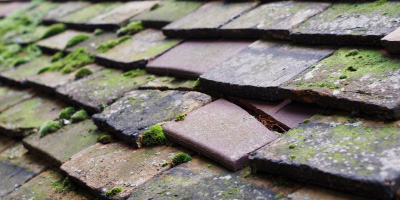Roofers roof repair costs
